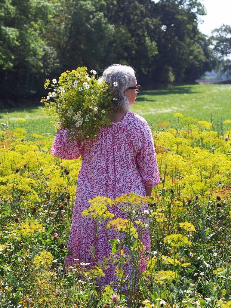Dillfeld, Blumen pfücken